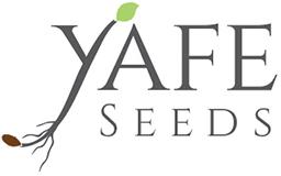 YAFFE SEEDS PRODUCTION