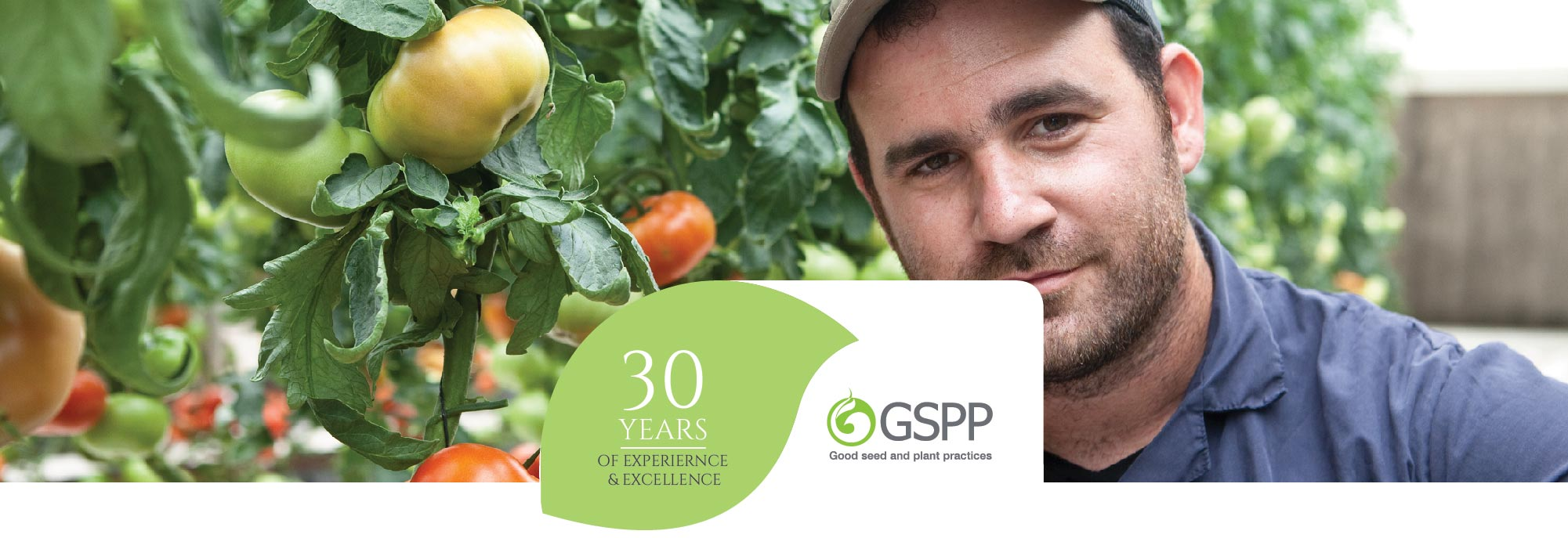 YAFFE SEEDS PRODUCTION- GSPP